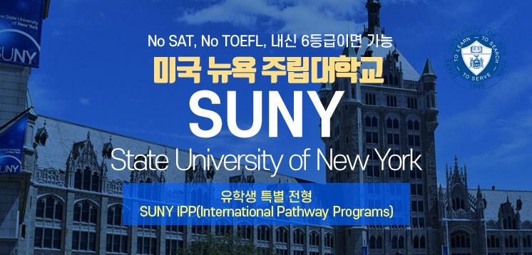 미국 뉴욕 주립대학교